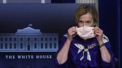Dr Deborah Birx Told The White House That Coronavirus Surge Was Fading: