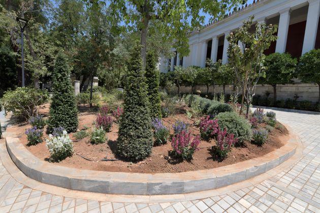 Εθνικό Αρχαιολογικό Μουσείο: Ανάπλαση του κήπου με 6.000 νέα