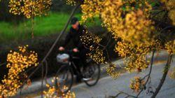 Πρώτη «Bike Friendly» Περιφέρεια της χώρας η