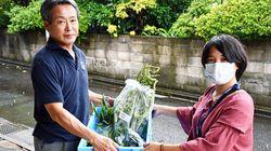 旬の野菜を子ども食堂に無償提供 困窮家庭を支援、板橋区が生産者から買い取り