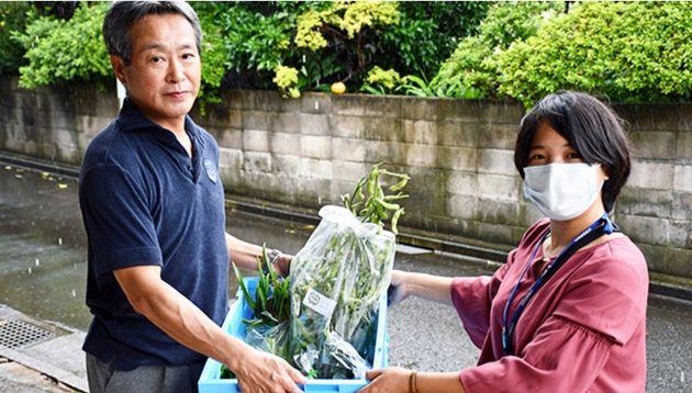 旬の野菜を月に一度届ける