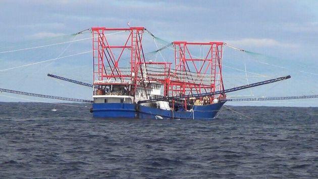 오징어 유인용 조명을 설치한 중국 오징어잡이