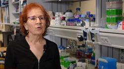 La viróloga Margarita del Val vaticina lo que puede ocurrir en otoño si no hay un cambio