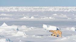 북극권 스발바르 제도가 사상 최고 더운 여름을