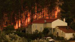 Πύρινη κόλαση στην Πορτογαλία: Μάχη με τις φλόγες δίνουν οι πυροσβέστες στα κεντρικά της