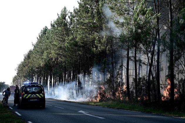 Des pompiers et des gendarmes évacuent une route près de Le Tuzan en Gironde, ce lundi...