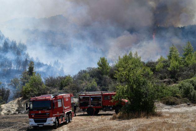 Σε 62 ανήλθαν οι δασικές πυρκαγιές το τελευταίο