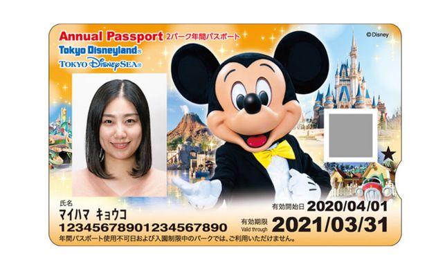 年間パスポートのイメージ画像
