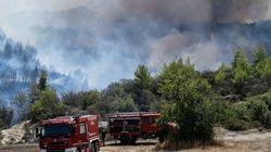 Μεγάλη πυρκαγιά σε δασική έκταση στην