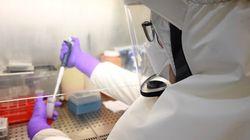 Vacunas españolas contra la COVID-19: estas son las cinco candidatas más