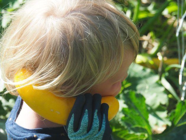 Hello? Yes? It's me, zucchini head!