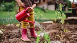 How To Get Your Kids To Enjoy Gardening (And Bond With You,