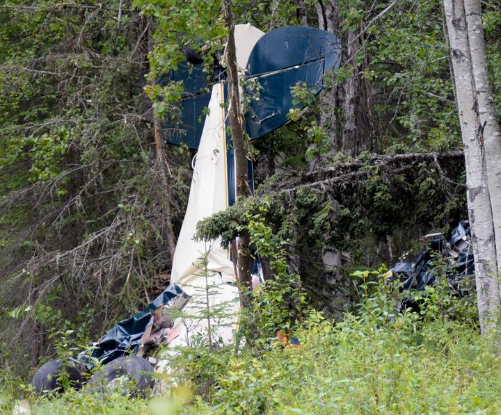 A plane rests in brush and trees after a midair collision outside of Soldotna, Alaska, on Friday, July 31, 2020. Seven people