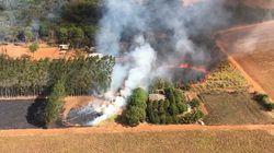 Βραζιλία: Αύξηση των πυρκαγιών στην Αμαζονία κατά 28% τον