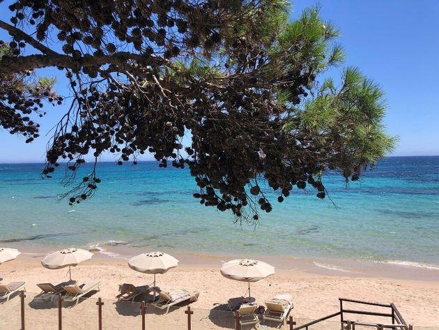 Dalla Costa Smeralda alla Barbagia: 10 motivi per scoprire il fascino della Sardegna Orientale