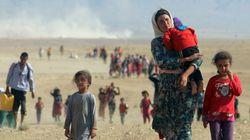 BLOG - 6 ans après les massacres des Yézidis du Sinjar par Daech, les chemins de la
