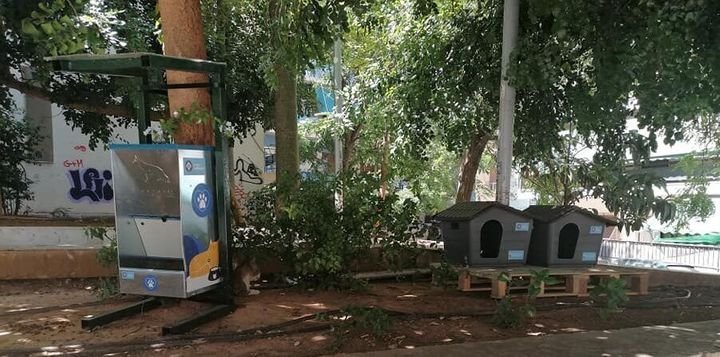 Δήμος Αθηναίων: Σπιτάκια για γάτες