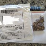 Those Mysterious Seeds In The Mail Are Part Of An Online