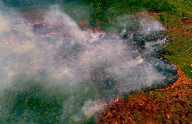 L'Amazonie et le Pantanal connaissent un nombre record d'incendies en ce