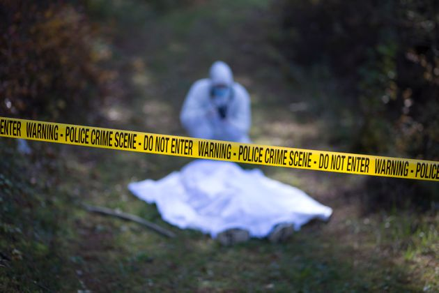 Forensic takes the picture from the crime scene on the road in the woods during a