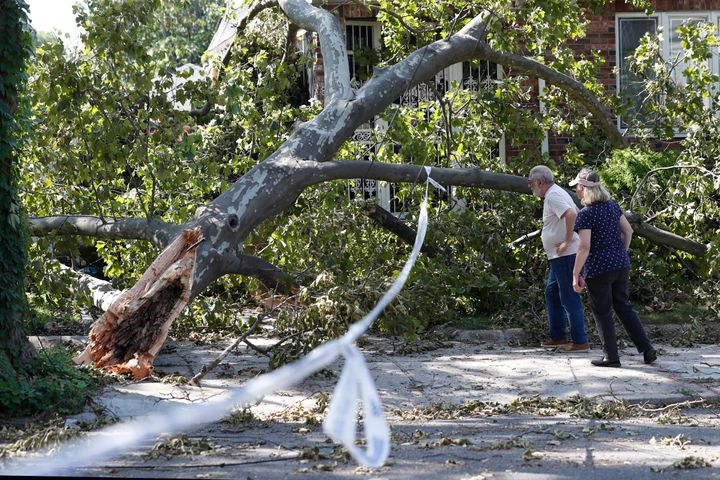 Neighborhood residents stop to inspect damage caused by a tree that fell on top of a house during Tropical Storm Isaias, Wedn