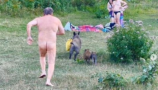 Γερμανία: Γυμνός άντρας κυνηγάει αγριογούρουνο που του έκλεψε το
