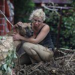 33 εικόνες καταστροφής και απόγνωσης από τις πλημμύρες στην
