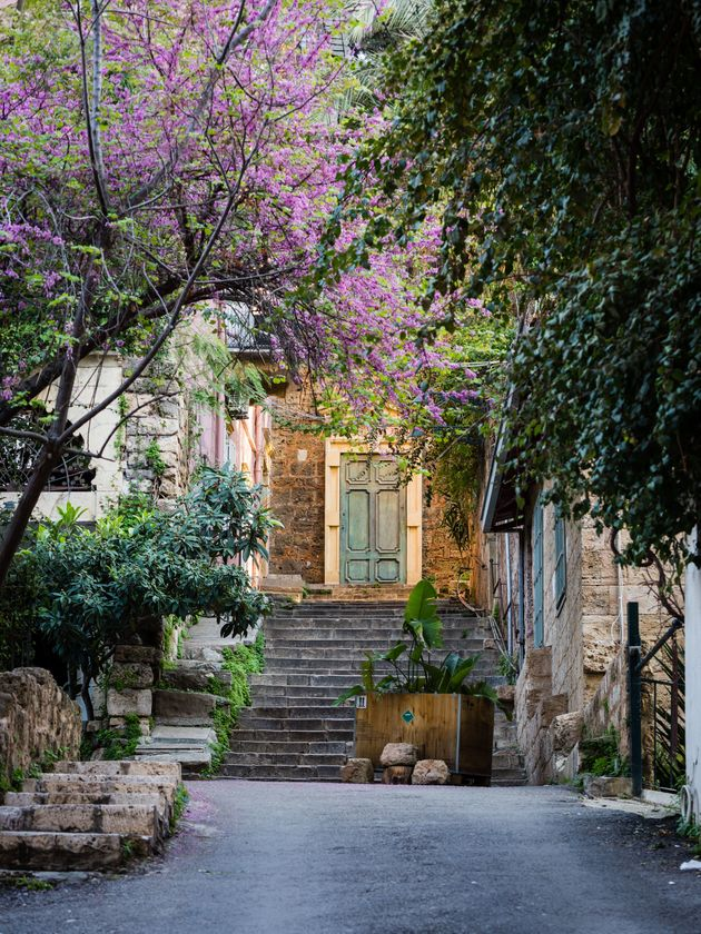 Sunlit ancient door with trees and staircase near the Sursock Palace area in Beirut,