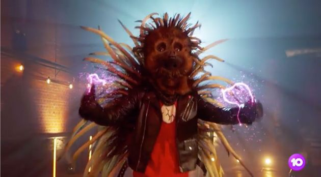 The Echidna on 'The Masked Singer