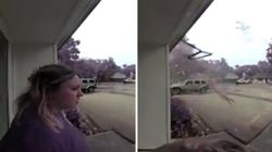 Fulmine cade a pochi metri dalla ragazza: lei illesa, l'albero colpito esplode