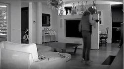 Il ladro in azione a casa di Facchinetti Jr: