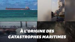Après Beyrouth et l'île Maurice, comment limiter les ravages des pavillons de