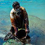 モーリシャス沖合の燃料「大半を回収」も....