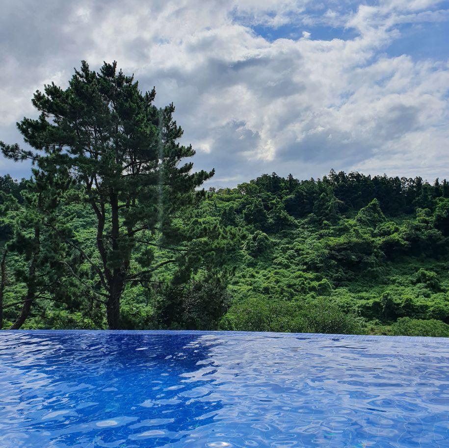 초록초록한 호텔 수영장 뷰.2020.7