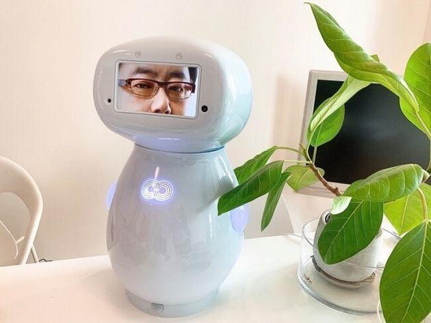 ▲接客応対ロボット「cinnamon」