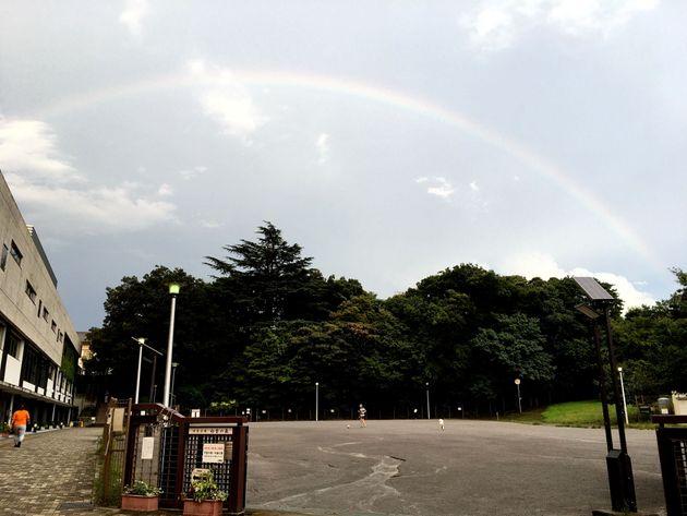 8月13日午後5時40分ごろ、東京都台東区の「防災広場 初音の森」で撮影