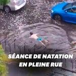 Ce nageur improvise une brasse en plein Paris après