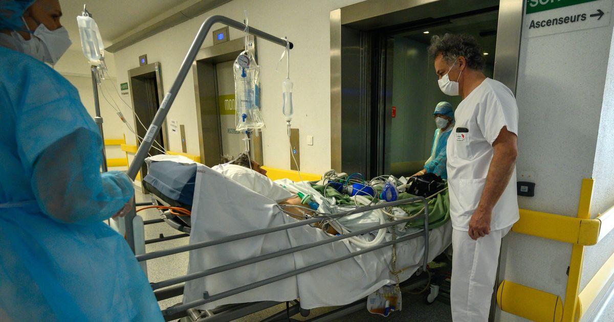 Les malades du Covid obèses ont 4 fois plus de risques d'en mourir, selon une nouvelle étude