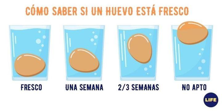 test para saber si un huevo es fresco