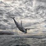 Εντυπωσιακό άλμα 4,5 μέτρων από λευκό καρχαρία που κατέγραψε