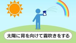 虹を簡単に作るコツとは?ポイントは