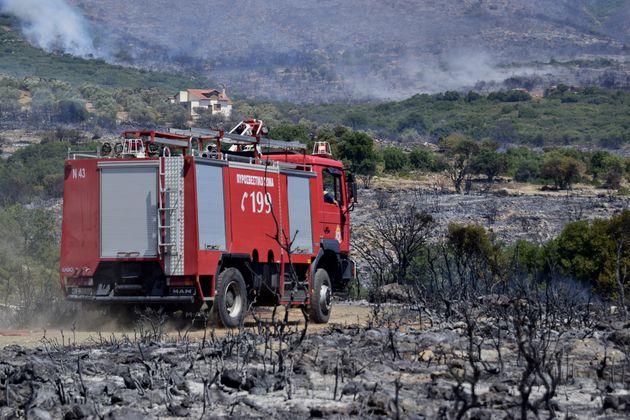 Πυρκαγιά σε δασική έκταση στα Αθίκια