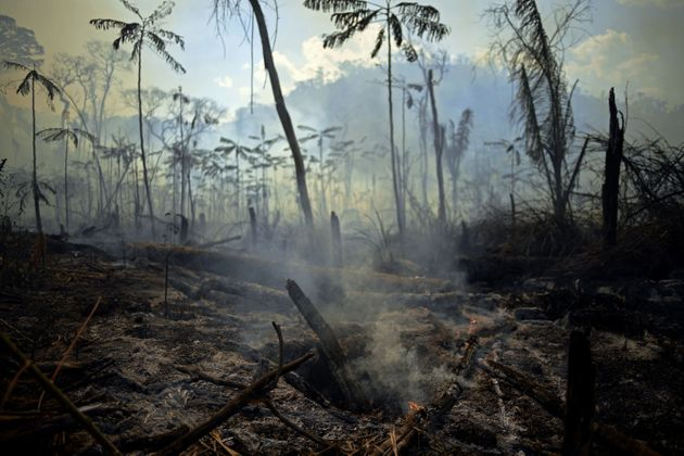 Βραζιλία: Νέες πυρκαγιές στον Αμαζόνιο κατακαίνε δασικές εκτάσεις και απειλούν