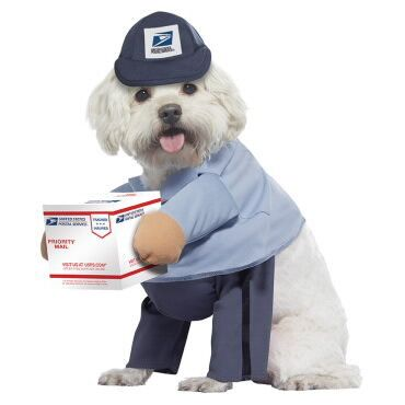 U.S. Mail Carrier Dog Costume, $17.99