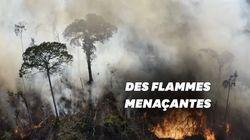 Au Brésil, la forêt amazonienne continue de brûler (et toujours