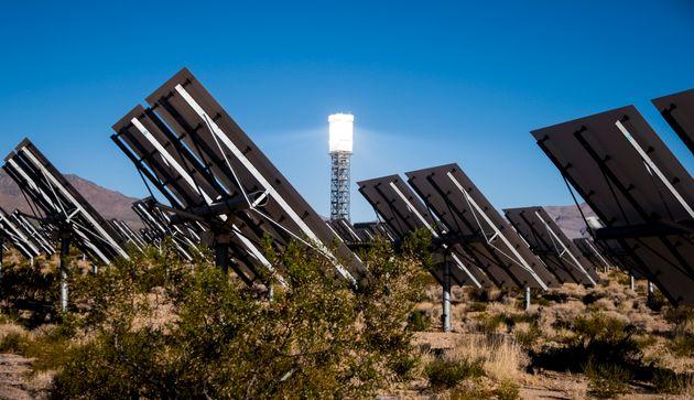 Sept ans après le défrichement des terres pour la construction de la centrale solaire d'Ivanpah,...