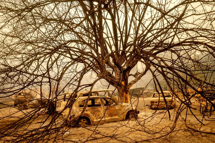 Burned vehicles rest beneath a tree after the LNU Lightning Complex fires tore through Vacaville, California, on Wednesday. F