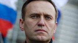 Un té letal: denuncian el envenenamiento de Alexei Navalny, el líder de la oposición a