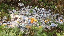 Des centaines de produits périmés Carrefour retrouvés dans une forêt du