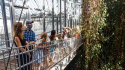 Le Biodôme de Montréal va rouvrir le 31 août: voici un